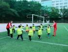 重庆幼儿园暑假班 沙坪坝幼托机构 渝北汽博托管中心