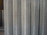 衡水批发优质镀锌电焊网直销批发