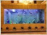 无锡定制高端鱼缸亲民的价格 观赏鱼搭配鱼缸设计
