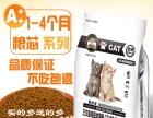 沈阳厂家直销贵族宝幼猫粮 幼猫猫粮1-4月小猫猫粮1kg