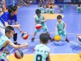 立格體育青少兒籃球俱樂部