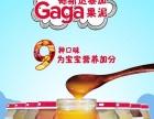 进口辅食:饴果乐、gaga加盟 母婴儿童用品
