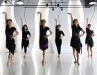 龙华民治的成人拉丁舞蹈培训班