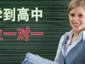 蚌埠暑假家教 高中物理【一对一】课外辅导