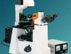 XSP-12C4倒置荧光显微镜43000元