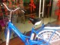 寮步二手电动自行车电动摩托车折叠电动车迷你电动车600左右24图