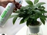 花小匠免稀释花卉营养液水培土培植物通用