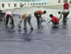 惠州防水补漏铁皮瓦草坪工程惠州水池防水