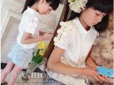 卡哇伊D 欧美女童装 2014夏装小七同款 蝴蝶结短袖衬衫 童装