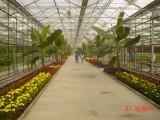 温室大棚厂家,中国领先的北京温室大棚厂家一站式品牌服务