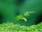 苏州环境工程设计资质公司出让18612034708(李)