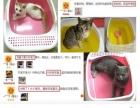 猫笼子 猫砂盆 猫抓板 猫饭碗
