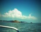 温州洞头出海捕鱼体验渔民捕鱼生活