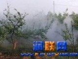 永城汽油动力喷雾机 喷雾喷粉机