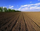 湖州南潯園區工業用地出售招商 20畝起 好項目土地免費