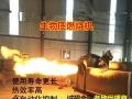 生物质颗粒燃料 锅炉燃料 燃烧机 颗粒机