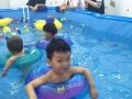 马博士婴幼儿游泳宝德店携手红樱贝贝亲子园感恩回馈!