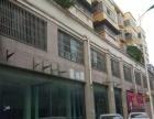 环球国际住宅底商出租,在胜利北路农商行北面,一二层