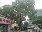 《米米铺》江苏省第二中医院对面路口处小吃店转让