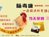 鸡得了肠道病出现肠炎肠毒综合征 顽固性球虫的治疗