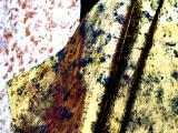 烫金沙发面料PU仿皮绒 服装裙子麂皮绒复合单面绒
