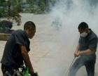 专业除白蚁、除虫灭鼠灭蟑、家庭灭白蚁、灭跳蚤