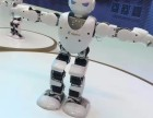 机器人科技展机器人活动策划机器人全国商演