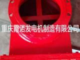 重庆霞诺生产 管道阻火器(干式阻火器)