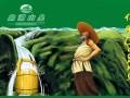 越秀区骏朗轩鼎湖山泉水广州总经销商配送桶装水服务热线