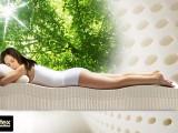 馬來西亞原裝進口Mylatex純天然乳膠枕