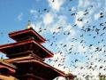 尼泊尔 - 感受雪山下的国度