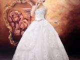 婚纱礼服2014新款韩版新娘婚纱礼服露背蕾丝齐地拖尾大码孕妇定制