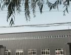 出租出售新建钢结构厂房1100平院落2200平