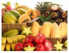 沙溪水果配送速度**,专业公司收费标准