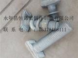 邯郸恒诺M12带齿哈芬槽T型螺栓