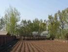 榆树环城大型牧业小区出租出售