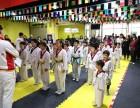北京市专业跆拳道特技表演培训就来龍圣搏击俱乐部