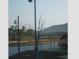 led路灯照明 小区公园道路灯 led太阳能路灯 交通信号立杆路