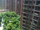 (第1房产)高档小区精致装修温馨倍至滨江国际1室1厅1卫
