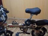 代駕電動單車
