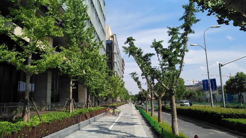 虹桥绿谷写字楼租赁中心丨虹桥商务区绿谷广场办公楼出租