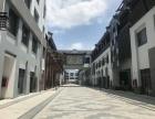 松江老城区50年大产权沿街金铺