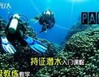 三亚潜水培训,三亚潜水旅游