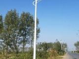 河北路灯 6米40瓦单臂太阳能路灯 路灯厂家直供