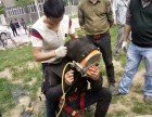 北京打捞公司 专业潜水打捞队 水下打捞作业