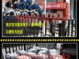 欢迎进入~!深圳抹灰机 生产厂家