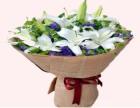 长春双阳平湖鲜花店网上订花送花上门