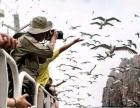 长岛秀丽渔家乐