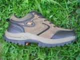 批发2013加勒比骆驼新款登山鞋男式户外鞋厂价直销物美价廉623
