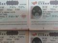 日本自由行签证申请、个人旅游签证申请,专业办理,欢迎咨询